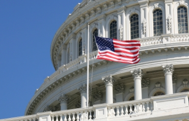 Trading in Congress: The Most Popular Stocks Owned by Congress