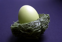 The Pros and Cons of IRAs and 401(k)s